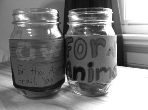 Our kids' charity jars on andreabadgley.com